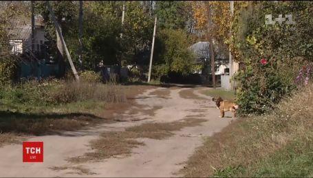 Селяне под Ичней разыскивают животных, сбежавших от взрывов