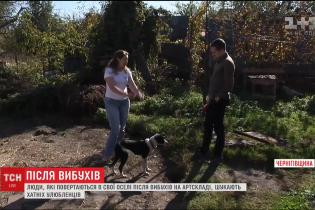 Взрывы возле Ични. Местные жители через соцсети разыскивают животных, которые испугались и убежали