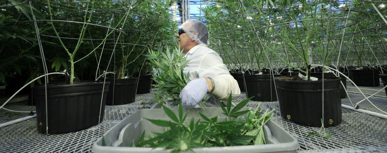 """""""Разрешили покупать, продавать и выращивать"""": в Канаде полностью легализовали марихуану"""
