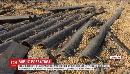 Из-за взрыва на зерновом элеваторе тысячи тонн кукурузы засыпали улицу и огороды селян