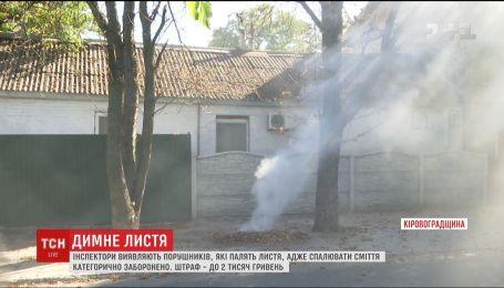 Коммунальщики призывают украинцев не палить опавшие листья