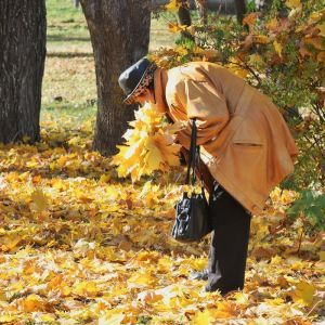 Сонце та високі градуси. Прогноз погоди в Україні на 20 жовтня