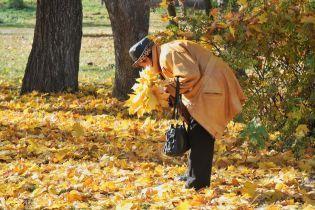 Солнце и высокие градусы. Прогноз погоды в Украине на 20 октября