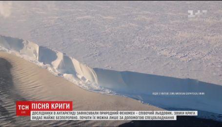 """В Антарктиде ученые записали жуткую """"песню"""" ледника"""