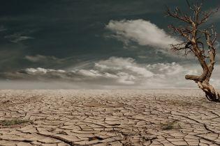 Хаотичность осадков, засуха и новые культуры. Метеорологи объяснили, какие последствия будет иметь самая теплая зима десятилетие