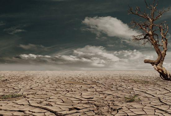 Хаотичність опадів, посуха та нові культури. Метеорологи пояснили, які наслідки матиме найтепліша зима десятиріччя