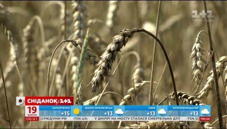 Російські добрива знищують український врожай