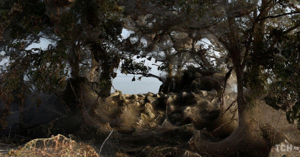 Озеро Вістоніда, Греція