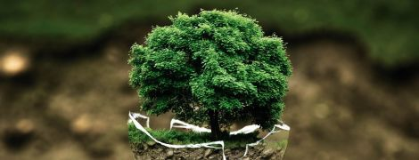 ТСН stories. Як людство може врятувати Землю від кліматичних змін