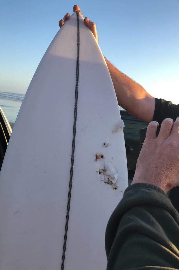 Напад акули на серфера