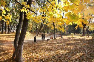 В Украину пришло потепление. Какой будет погода 12 октября
