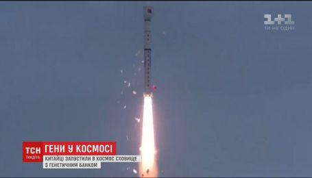 Китай запустил в космос ракету-носитель с генетическим банком