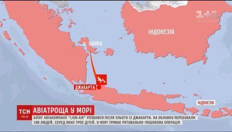 У Індонезії розбився літак компанії Lion Air