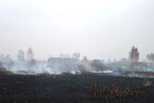 На Черниговщине спасатели уже неделю тушат масштабное возгорание торфяников
