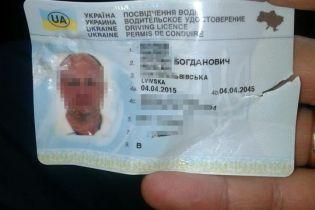 Во Львове водитель пытался проглотить права и укусил патрульного