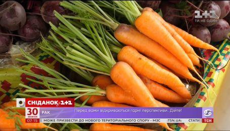 Монетизация субсидий, дешевая морковь и экспресс к аэропорту Борисполь - экономические новости