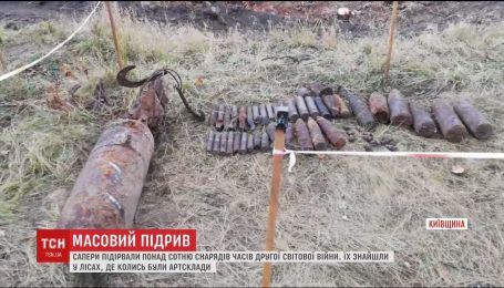 Саперы взорвали более 100 снарядов времен Второй мировой войны, которые нашли в лесу в Киевской области