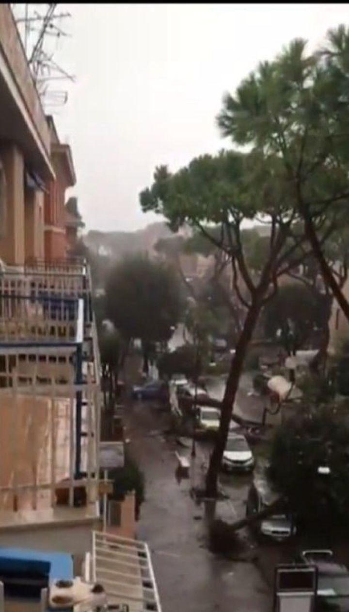 В Італії десятки людей травмувалися через падіння дерев