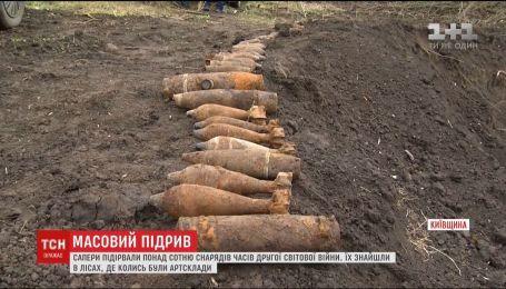 Саперы прочесывают леса Киевщины в поисках неразорвавшихся снарядов