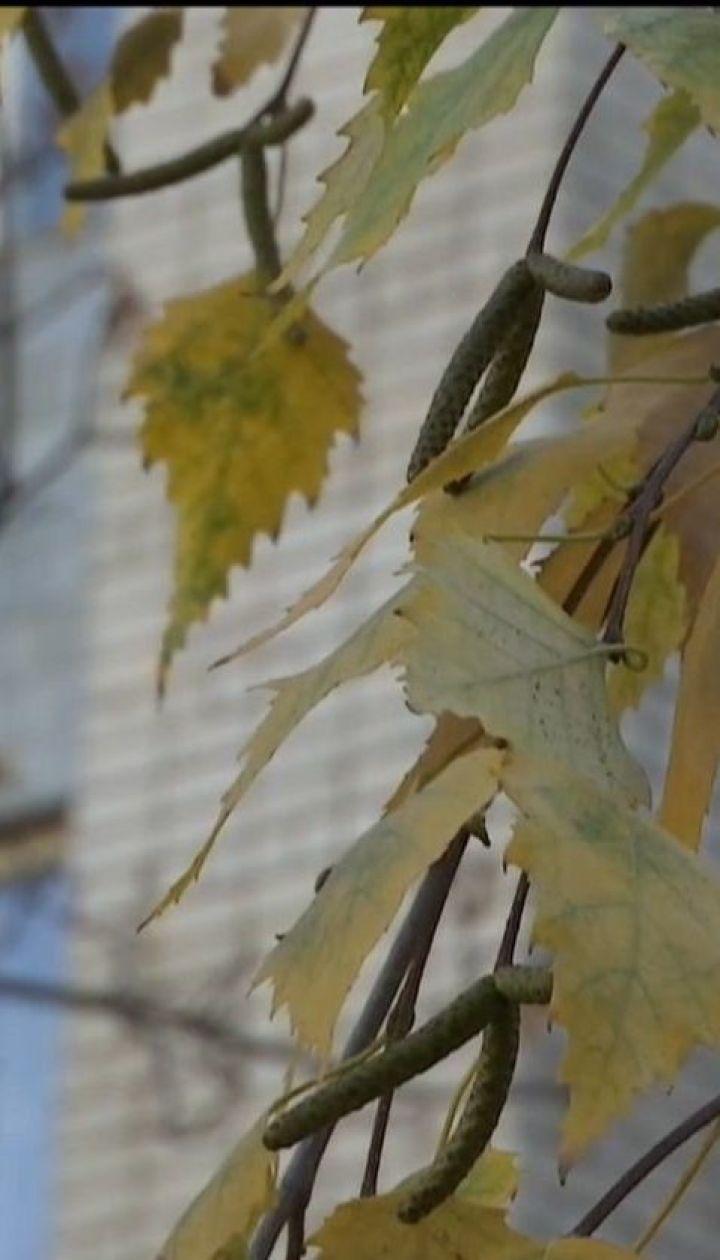 Следователи и родители пытаются выяснить причину самоубийства 14-летней школьницы