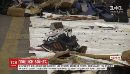 Авіакатастрофа  в Індонезії: рятувальники під водою виявили 22-метровий об'єкт