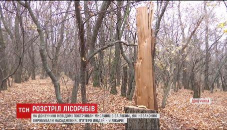 В лесополосе на окраине Славянска расстреляли пятерых мужчин