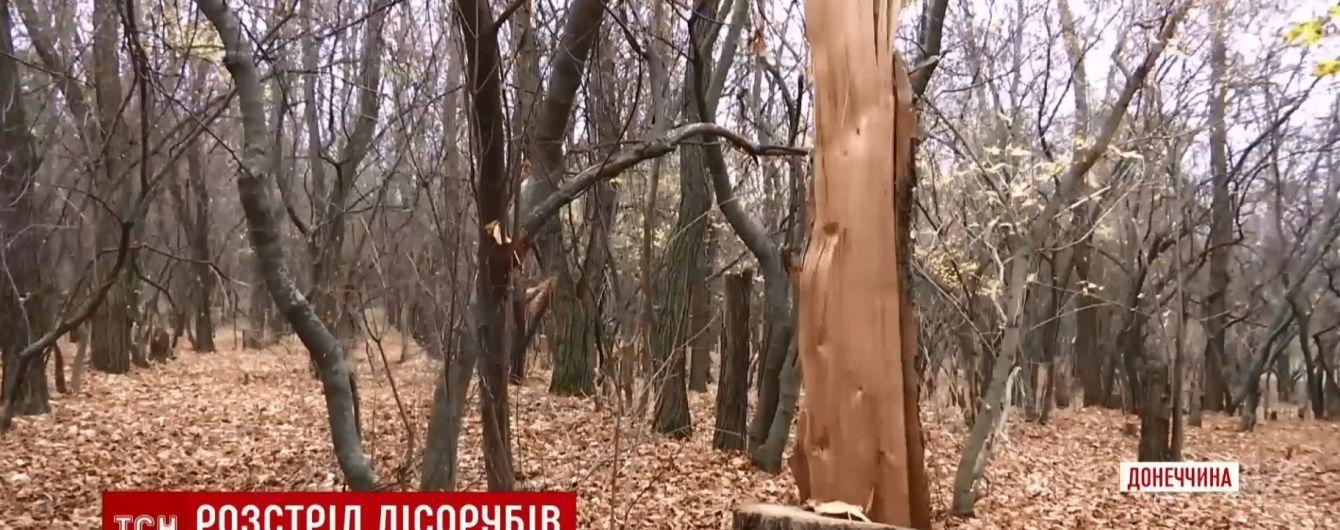Загадковий розстріл чорних лісорубів: поліція Донеччини вже вийшла на слід нападників