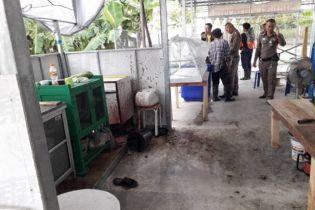 В Таиланде посетители вегетарианского ресторана обнаружили в еде куски человеческого мяса