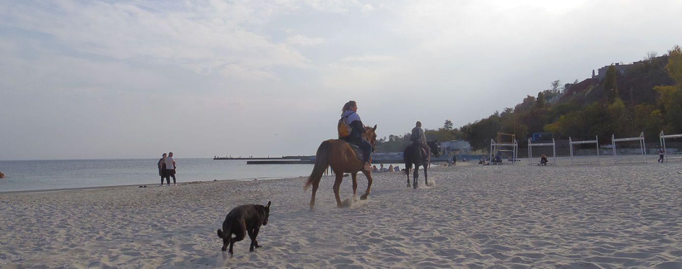 Популярному пляжу в Одессе грозит масштабный оползень