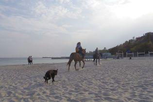 Українцям не рекомендують купатися на одеських пляжах