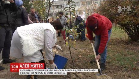 В столичной больнице скорой помощи высадили фруктовые деревья, посвященные донорам