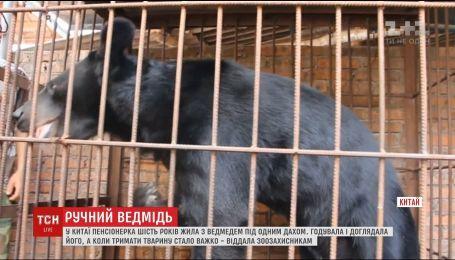 У Китаї пенсіонерка шість років тримала в себе вдома гімалайського ведмедя