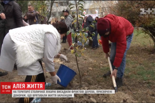 У Києві висадили алею на честь донорів, які заповіли свої органи заради порятунку інших людей
