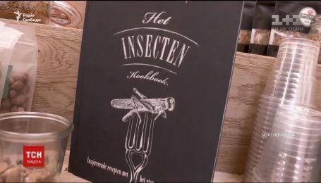 В Нидерландах разрешили выращивать и продавать насекомых для использования в пищу