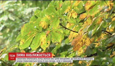 Протягом робочого тижня в Україні триматиметься тепла погода