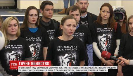 Друзі Катерини Гандзюк пообіцяли оприлюднити результати власного розслідування