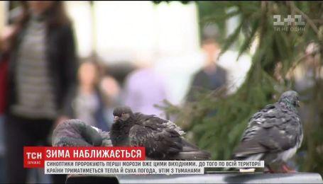 Осень бьет рекорды: перед заморозками в Украине ожидается аномальное тепло