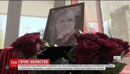 В ВР требуют создать временную следственную комиссию по расследованию нападения на Екатерину Гандзюк