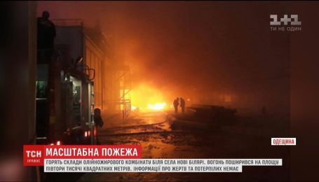 В Одесской области горят склады масложирового комбината