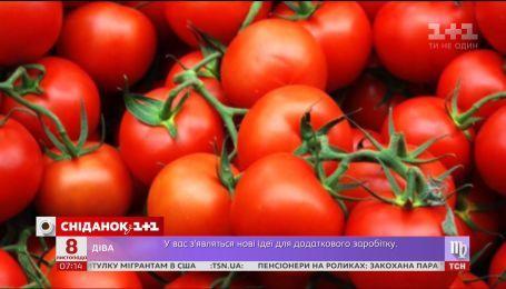 Дефицит помидоров и биометрический паспорт онлайн - экономические новости