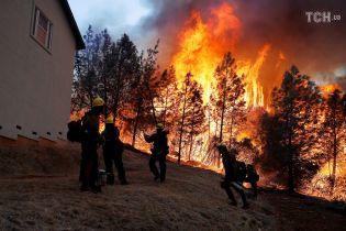 Трамп назвал виновных в лесных пожарах в Калифорнии