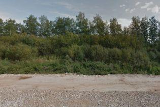 На узбіччі дороги неподалік Миколаєва знайшли відрізану людську голову