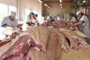 Україна майже в шість разів більше почала закуповувати свинину за кордоном
