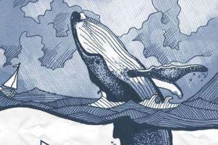 Спят стоя и поют. Интересные факты о китах