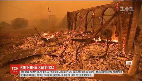 Лесные пожары в Калифорнии: огонь уничтожил несколько тысяч зданий