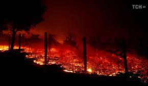 Жертвами масштабної лісової пожежі у Каліфорнії стали дев'ятеро людей