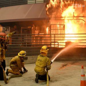 Мнение Трампа о причине пожаров в Калифорнии возмутило американцев