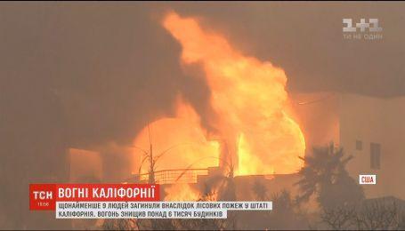Лесные пожары в Калифорнии: звезды массово бегут из охваченных огнем районов