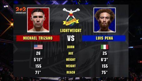 UFC. Майкл Тризано - Луис Пена. Видео боя