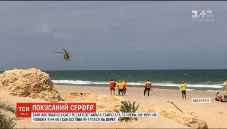 На австралийском пляже акула атаковала серфера